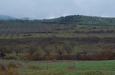 УВКБ: возращение беженцев и внутренних переселенцев в Нагорный Карабах и прилегающие районы должно быть добровольным